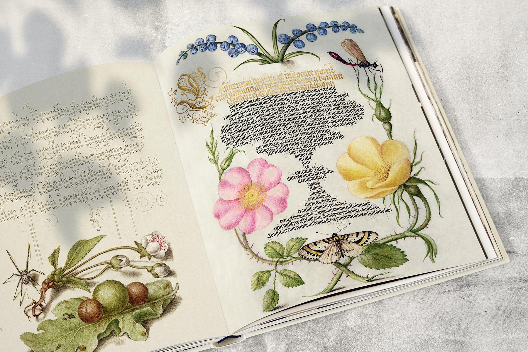 advanced botanics